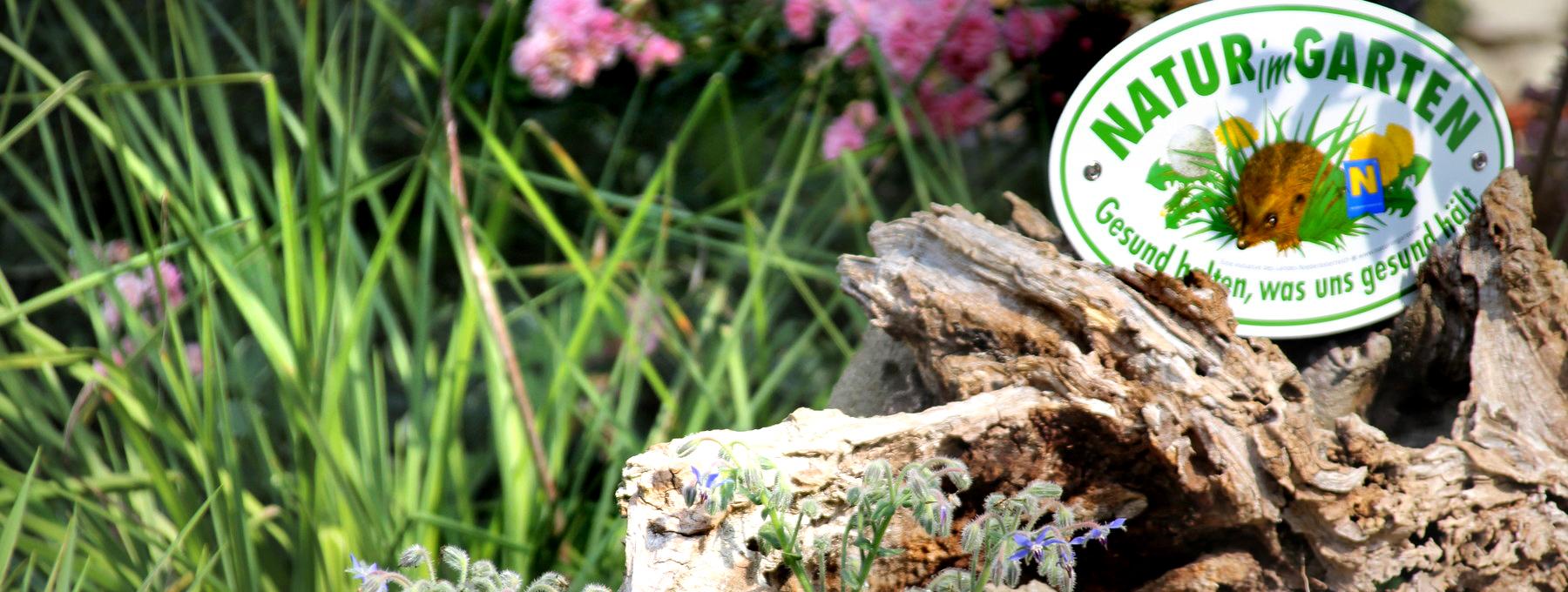 Tv Natur Im Garten Ausreise Info