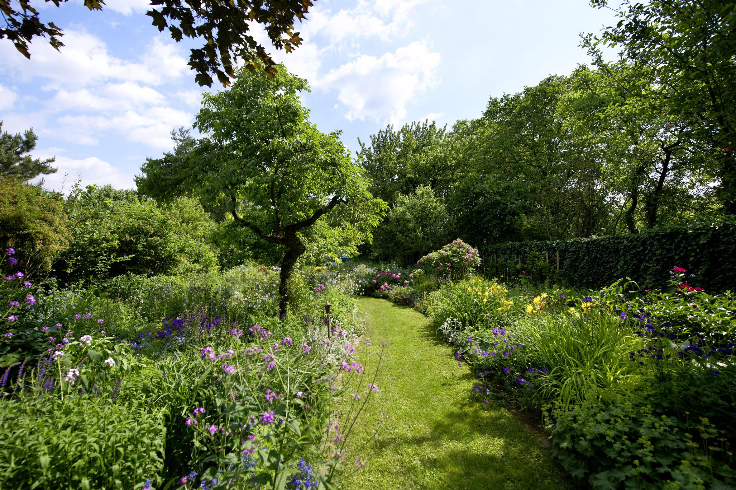 naturgarten der sanfte weg zum gartengl ck willkommen auf natur im garten. Black Bedroom Furniture Sets. Home Design Ideas