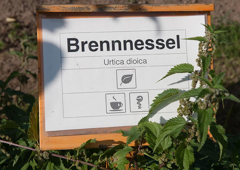 Kräutergarten der Caritas in Retz - Willkommen auf Natur im Garten