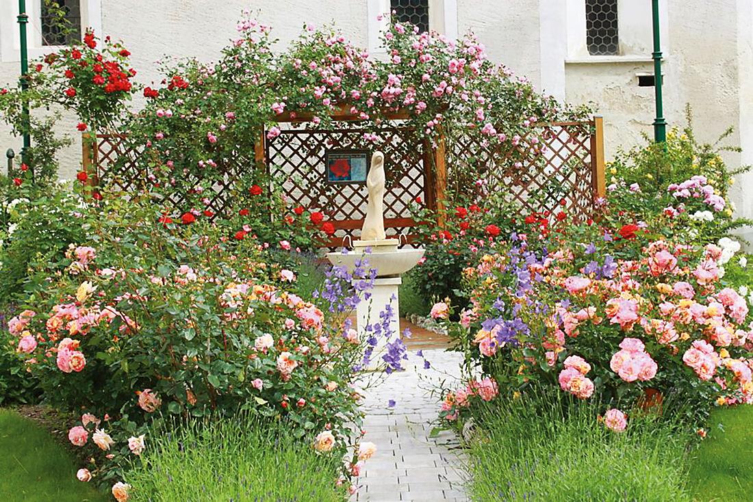SchaugärtnerInnen - Willkommen auf Natur im Garten