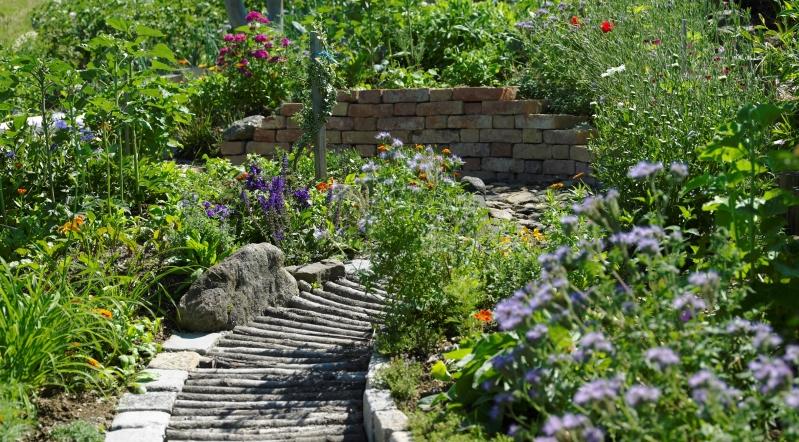Schaugarten maria und josef huber blumen bienen reich for Natur im garten
