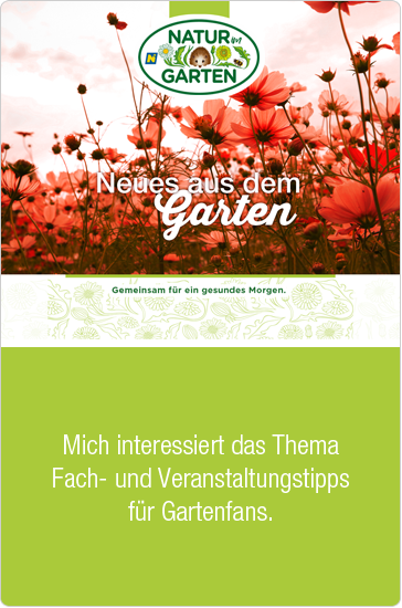 Neues Newsletter hover